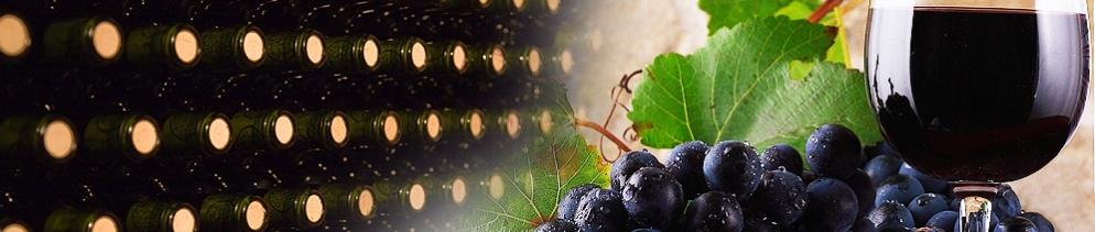 Винопроизводство